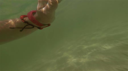 A young girl with dad swim in shallow water in green sea. Stock Footage