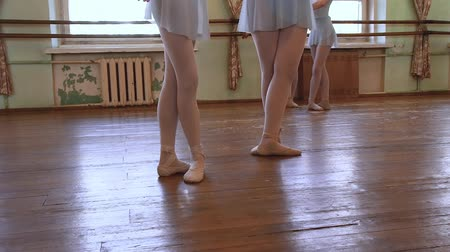 terlik : Ballerinas in blue leotards do exercises in pairs during ballet class.