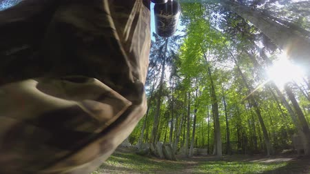 Paintball player takes a position in front of the game in the forest
