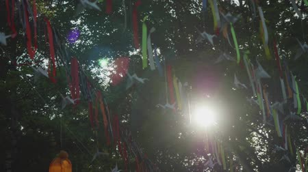 árbocszalag : Pennants hanging on line amid tree branches. Bright sunbeam glints through branches