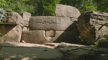 unknown : View of part of ancient building dolmen among trees