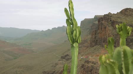 catch : View from viewing point in centre of Grand Canaria Stock Footage