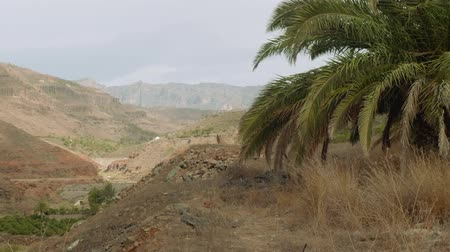 greatness : View from viewing ponti in centre of Grand Canaria Stock Footage