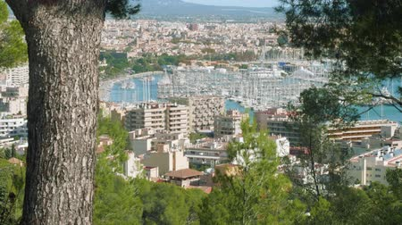 baleár : View of Palma de Majorca from Bellver castle on sunny day suitable for travelling
