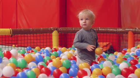 first born : Funny blond toddler with electrified hair in dry pool with balls