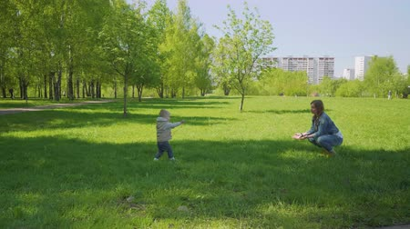 loved : Cute blond toddler with stick approaches his mother Stock Footage