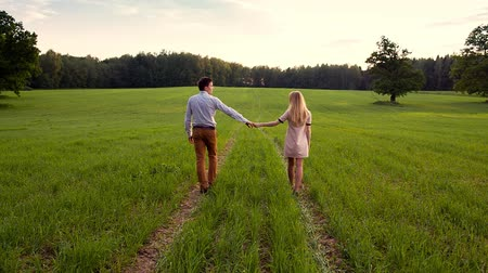 holding : Loving Couple Holding Hands In Field Stock Footage