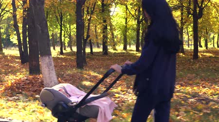 toló : Woman walking with baby stroller in park