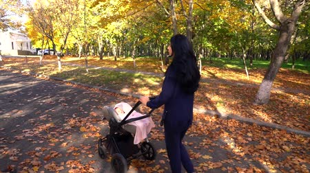 wozek dzieciecy : Young woman walking with baby stroller Wideo