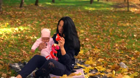 parkland : Young woman trying to cheer up baby in park Stock Footage