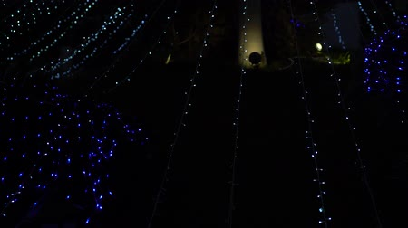ornamento : Strands of flashing blue and white Xmas lights