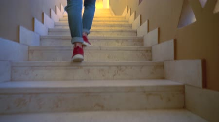 ebruli : Person walking up indoor stairs at home Stok Video