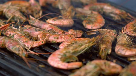 speciality : Grilled whole fresh pink prawns on the griddle Stock Footage
