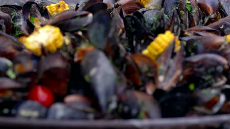 Fresh boiled mussels served with vegetables Stock Footage