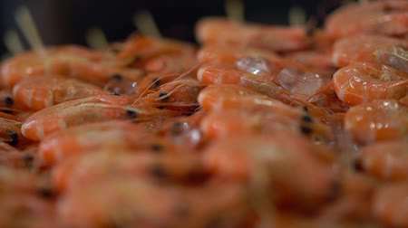 Rows of fresh pink prawns on ice