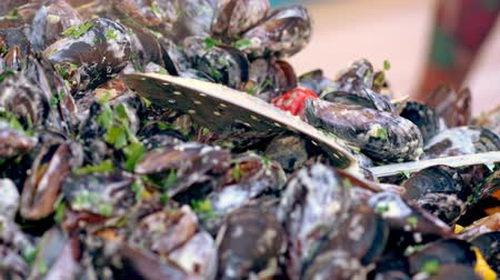 Fresh steamed mussels in a creamy sauce
