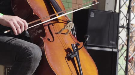 busking : Man playing a double bass during a performance Stock Footage