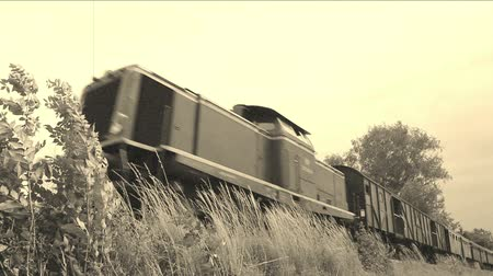 garça real : Old train is passing by, old film