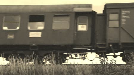 garça real : Old steam locomotive is passing by, old film