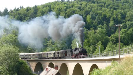 lokomotif : Steam train runs over a viaduct, Swabian Forest Railway Stok Video