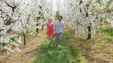pomar : Cheerful couple in romantic orchard Vídeos