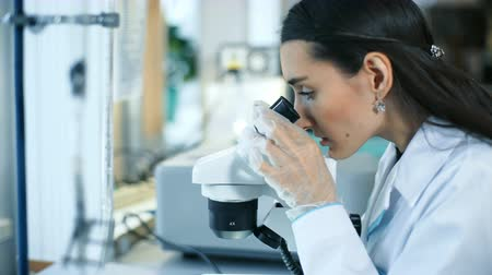 dropper : Beautiful woman in a laboratory working with a microscope
