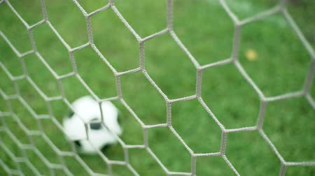 penas : View of soccer ball through goal net on green grass field Stock Footage