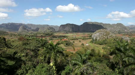 kuba : Cuba. Tropical nature of Vinales Valley. Stock mozgókép