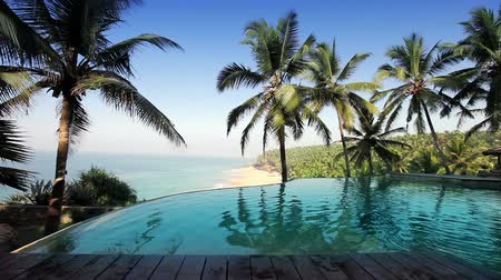 релаксация : pool on the edge of the rock overlooking the ocean and palm trees