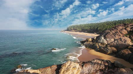 paraíso : Paradise beach with stones and palm trees, aerial view. Kerala, India.