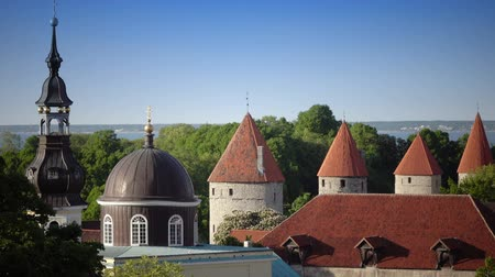 балтийский : City panorama from an observation deck of Old city spikes of churches and ancient towers. Tallinn. Estonia Стоковые видеозаписи