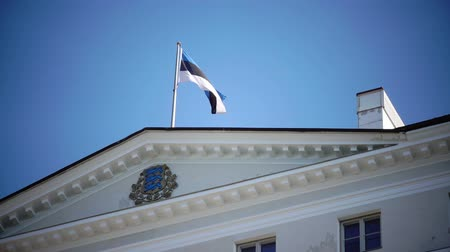 chancellery : Close up of national flag of Estonia onThe Stenbock House, the building of the government and the State Chancellery of Estonia. Facade and stairs. Tallinn, Vyshgorod, Rahukohtu street