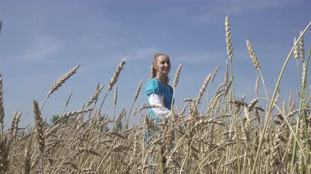 hair growth : young slender woman with a long fair hair in a blue dress goes across the field of ripe wheat to summer sunny day