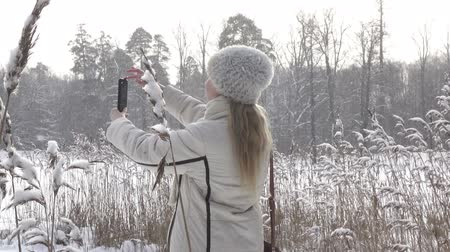 vízpart : The young woman in a white jacket photographs a panorama of the coast of the winter forest lake on the smartphone,It is snowing