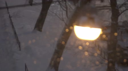 Street lamp at night during a snowstorm
