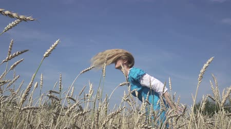 plavé vlasy : happy young slender woman with a long fair hair in a blue dress rotates in the field of ripe wheat in summer sunny day.Slow motion