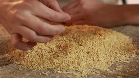 repast : Bad dirty and low-quality rice close up. Stock Footage