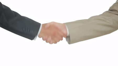 coalition : A Business Handshake with White Background, Two men shake hands