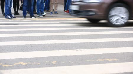 zebra : foot crosswalk. People cross the road. feet walking on the pavement.