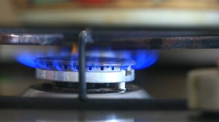 gas burner flame : The igniting flame of the gas stove. close-up