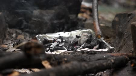 tentáculo : 4k, slow motion. a man-tourist shoots a fire for a grill in the forest.