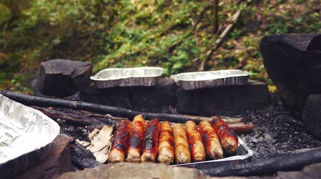 tentáculo : 4k, slow motion. the tourist is cooking sausages on a mini grill in the forest. close-up