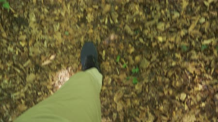 silvicultura : Steadicam Shot. male legs in sneakers go through the mountain wet Forest, with mossy stones and tree roots, personal perspective of view, 4k, slow motion