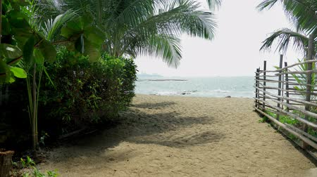 forrado : Bamboo pole fence on a tropical island. white sandy beach with palm-lined shore.