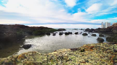 eb : sea ebb, rocky seashore after low tide against a blue sky and clouds. seascape Stockvideo