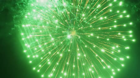 pirotecnia : Abstract colored fireworks in the night sky. background copy space