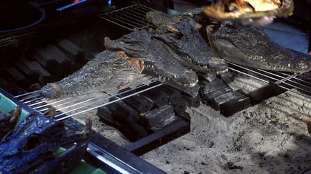 crocodilo : The concept of Asian cuisine. heads of little alligators, on the brazier Vídeos