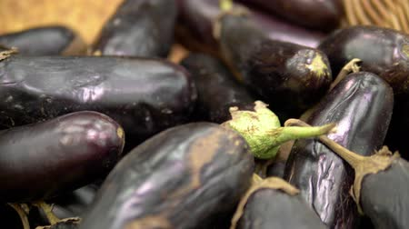 gine : Social market concept, cheap products. rotten withered eggplant on the counter in the store