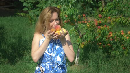 morele : A woman holds an armful of fresh peaches in a peach orchard amid fruit trees. and enjoys the flavor of peaches.