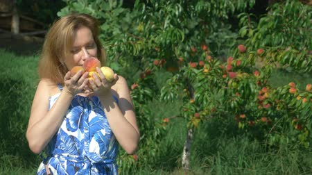 meruňka : A woman holds an armful of fresh peaches in a peach orchard amid fruit trees. and enjoys the flavor of peaches.